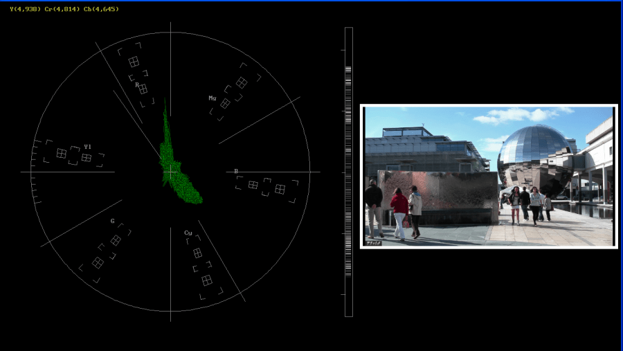 Vectorscope for CbCr monitoring with luma stick and mini picture